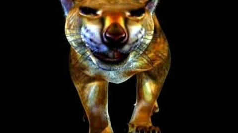 Marsupial Lion - you've never seen anything like! Storyteller Media