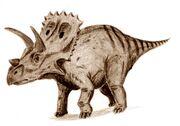 Arrhinoceratops-Arthur-Weasley