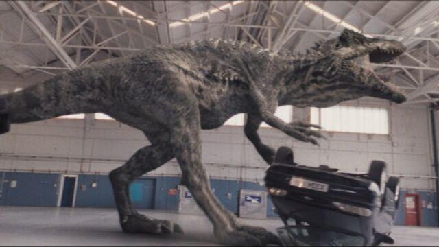 File:3x4 Giganotosaurus 9.jpg