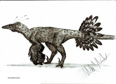 Paronychodon lacustris by teratophoneus-d4whufx