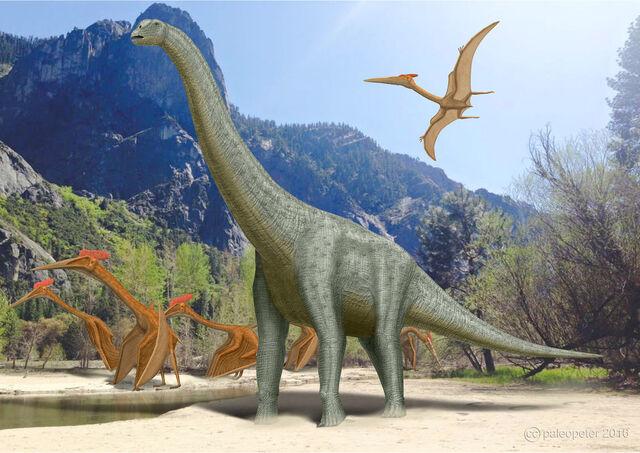 File:Alamosaurus quetzalcoatlus by paleopeter-d9qegf3.jpg