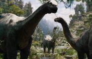 Brontosaurus . 001