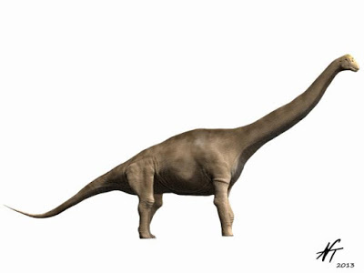 Tastavinsaurus NT2