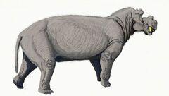 Uintatherium2.jpg