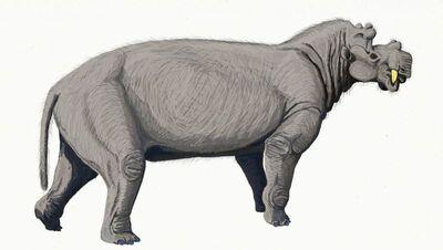 Uintatherium2