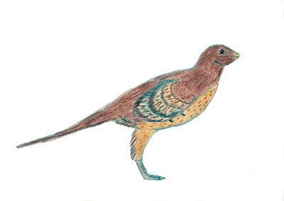 Eosinopteryx