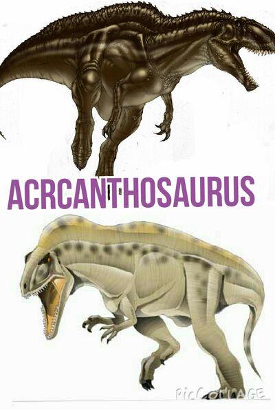 Acrcanthosaurus