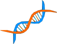 File:DNA Icon.png
