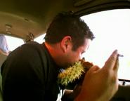 Cactusincident6