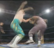 Mexican wrestling6