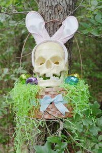 Binky wonderskull erister bunny alden loveshade