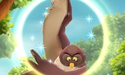 File:DMW Owl.jpg