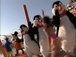 WaiterPenguinsinBeachPartyatWaltDisneyWorld