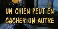 The Shaggy Dog (1994 film)