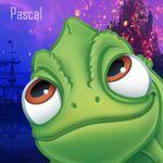 Pascal Promotional Headshot
