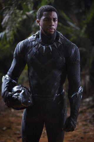 File:Black Panther photography 3.jpg