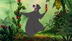 Baloo Picking