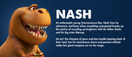Nash Profile