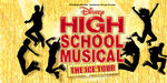 Hsm the ice tour