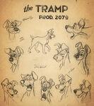 Tramp modelsheet