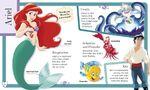 Ariel look