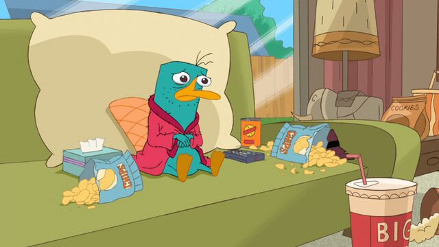 File:Perry watching his stories on a day off.jpg