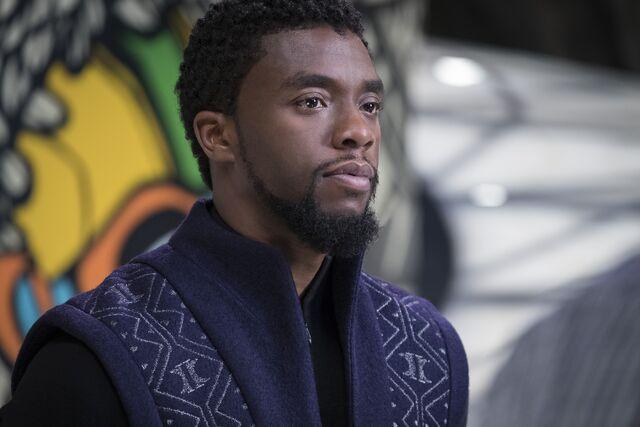 File:Black Panther photography 20.jpg