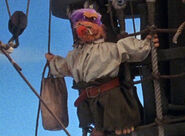 Purple hair pirate