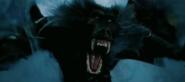 Scary Lookin' Baboon