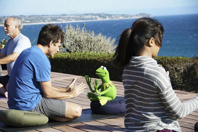 File:TheMuppets-JasonBateman&Kermit-Scene.jpg