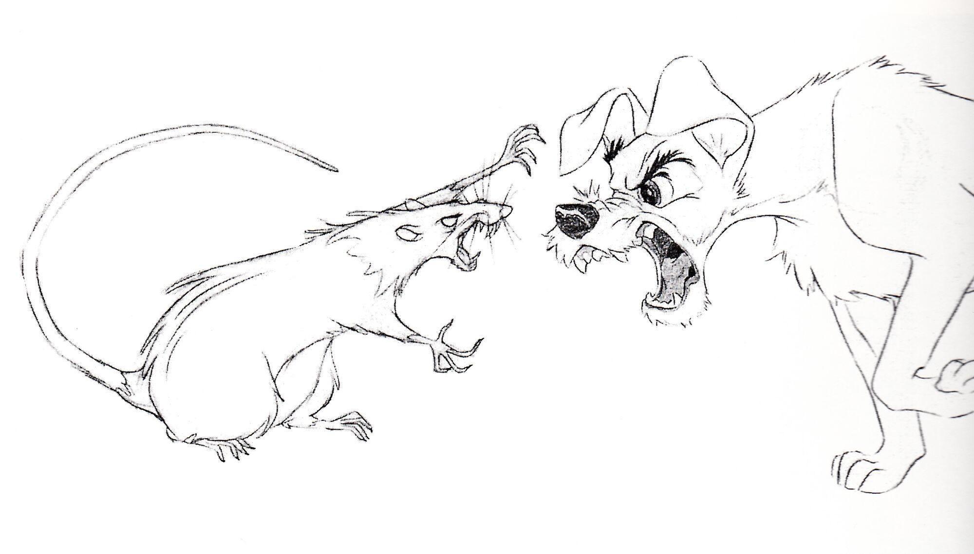 image walt disney sketches the rat the tramp walt disney