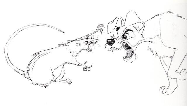 File:Walt-Disney-Sketches-The-Rat-The-Tramp-walt-disney-characters-34266244-2381-1356.jpg