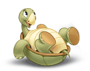 File:Turtlepic2.png