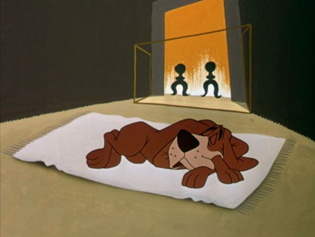 File:Dog sleeping on the rug.jpg