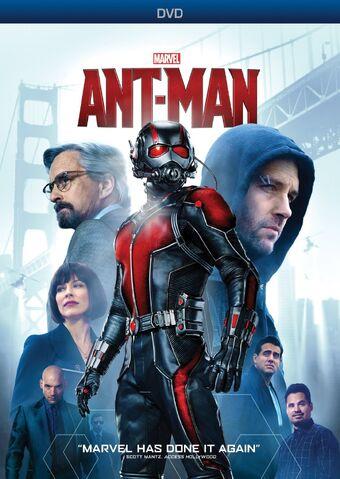 File:Ant Man DVD.jpg