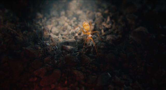 File:Ant-Man (film) 19.png
