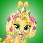 PalacePets-Daisy