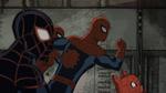 Spider-Man Spider-Girl Spider-Ham Miles Morales USMWW