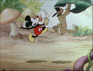 Mickey's Garden-52