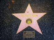 Disneyland hollywood walk of fame star