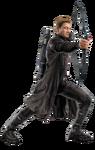 AoU Hawkeye 02