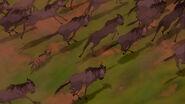 Lion-king-disneyscreencaps com-3870
