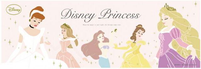 File:NEWS disney princess-644x222 better.jpg