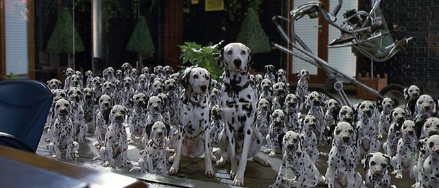 File:101-dalmatians-1996-5.png