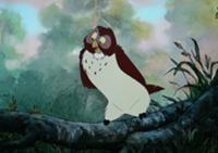 File:Owl11.jpg