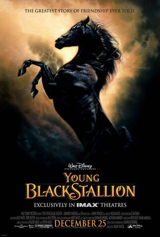 File:The Young Black Stallion.jpg