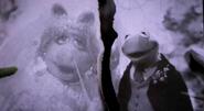 Kermit-and-Piggy-Torn-Wedding-Photo