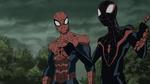 Miles Morales & Spider-Man USMWW 8