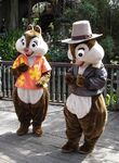 Chip N Dale are Rescue Rangers