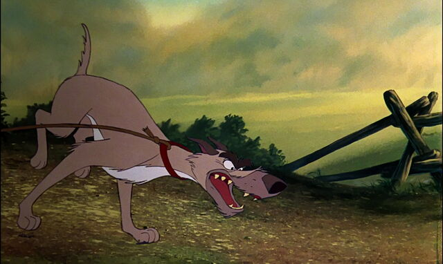 File:Fox-and-the-hound-disneyscreencaps.com-2500.jpg